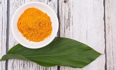 Arjuna Targets EU Market with Patented Curcumin (PRNewsFoto/Arjuna Natural Extracts Ltd.)