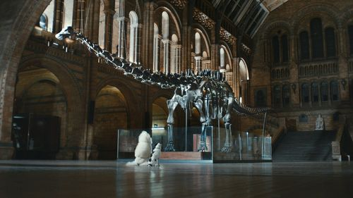 Harvey and Harmony visit London's Natural History Museum in Thinkbox's new TV ad (PRNewsFoto/Thinkbox)