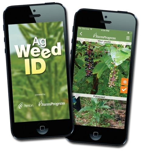 Penton Farm Progress Unveils the Ag Weed ID App (PRNewsFoto/Penton)