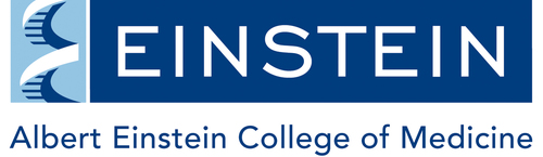 Albert Einstein College of Medicine Logo. (PRNewsFoto/Albert Einstein College of Medicine) (PRNewsFoto/)
