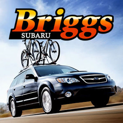 Briggs Subaru Happy to Contribute Towards Record Month of November.  (PRNewsFoto/Briggs Subaru)
