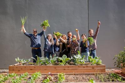 Steviva Ingredients Community Garden