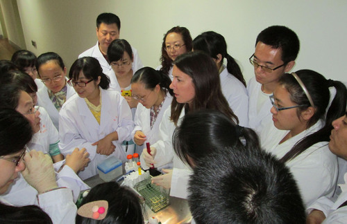 A. Hilberer of IIVS demonstrates in vitro techniques to Chinese scientists.  (PRNewsFoto/Institute for In Vitro Sciences)