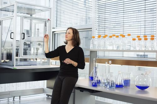 Professor Molly Shoichet, Laureate of the 2015 L'Oreal-Unesco For Women in Science Award. Photo copyright ...