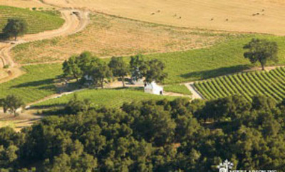 HammerSky Vineyards, Paso Robles. (PRNewsFoto/HammerSky Vineyards) (PRNewsFoto/HAMMERSKY VINEYARDS)