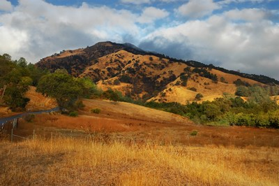 The golden hills of Vacaville, CA