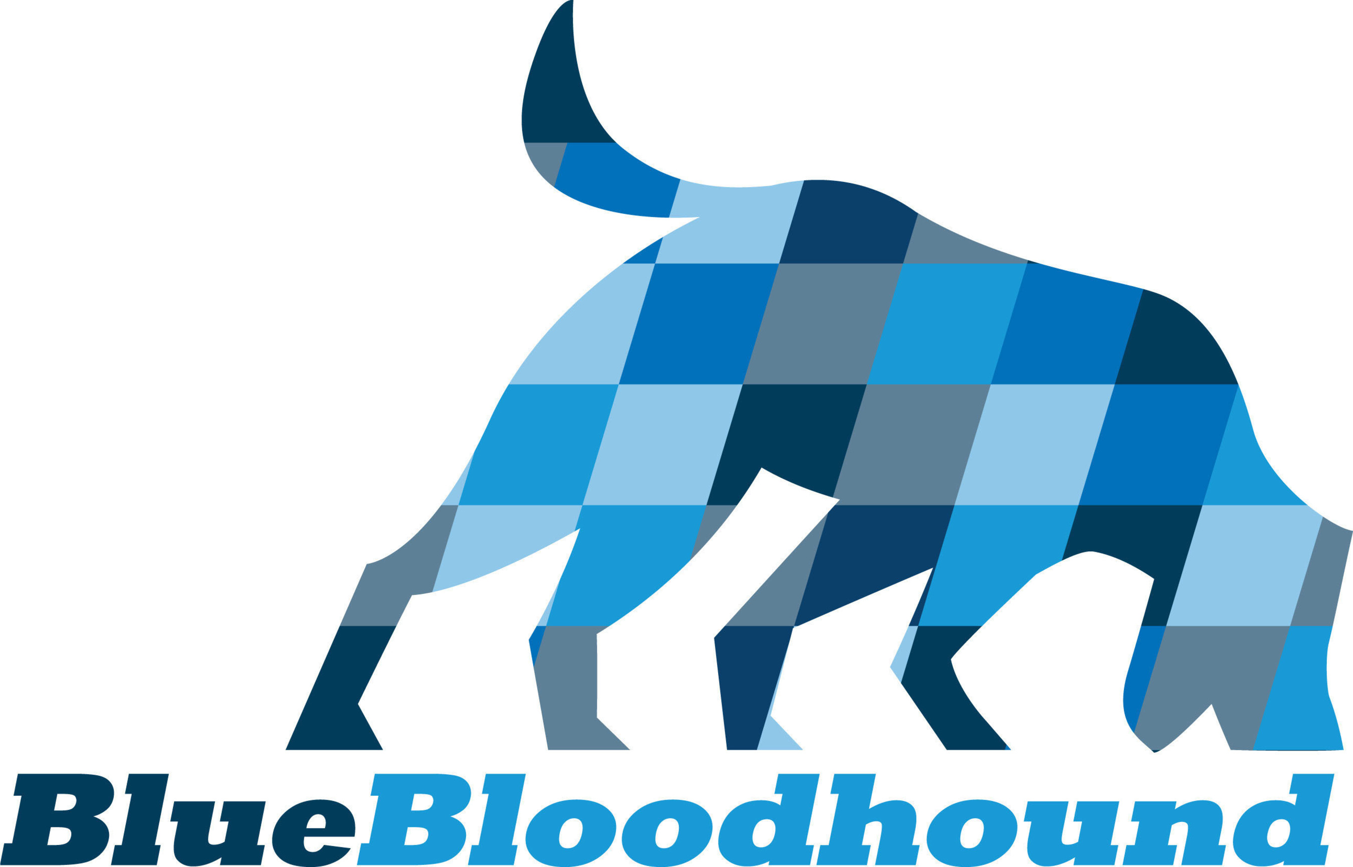 Blue Bloodhound is revolutionizing the trucking industry through its new, online marketplace by connecting qualified truck drivers in need of extra work, with motor carriers posting immediate pay-by-the-run local and long-haul jobs throughout the United States.