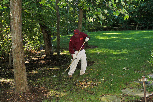 April is National Lawn Care Month, and the time of year when homeowners turn to the care and upkeep of their ...