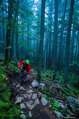 Mountain biking in the Mt Macpherson recreational area near Revelstoke, BC