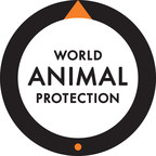 Celebrate #GivingTuesday with World Animal Protection