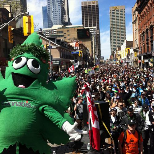 16th Global MariJuana March hits Toronto this Saturday! (PRNewsFoto/Global Marijuana March)