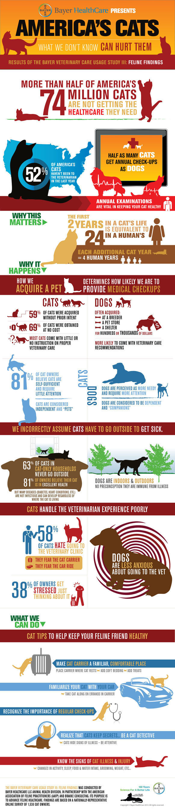 """""""America's Cats: What We Don't Know Can Hurt Them.""""  Results of the Bayer Veterinary Care Usage  ..."""