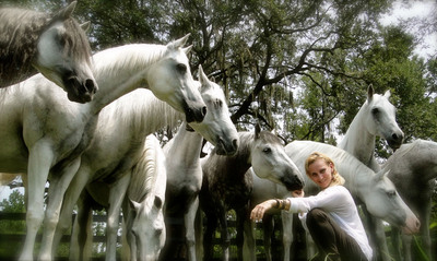 Equestrian Superstar Sylvia Zerbini Makes Directorial Debut In Valitar™