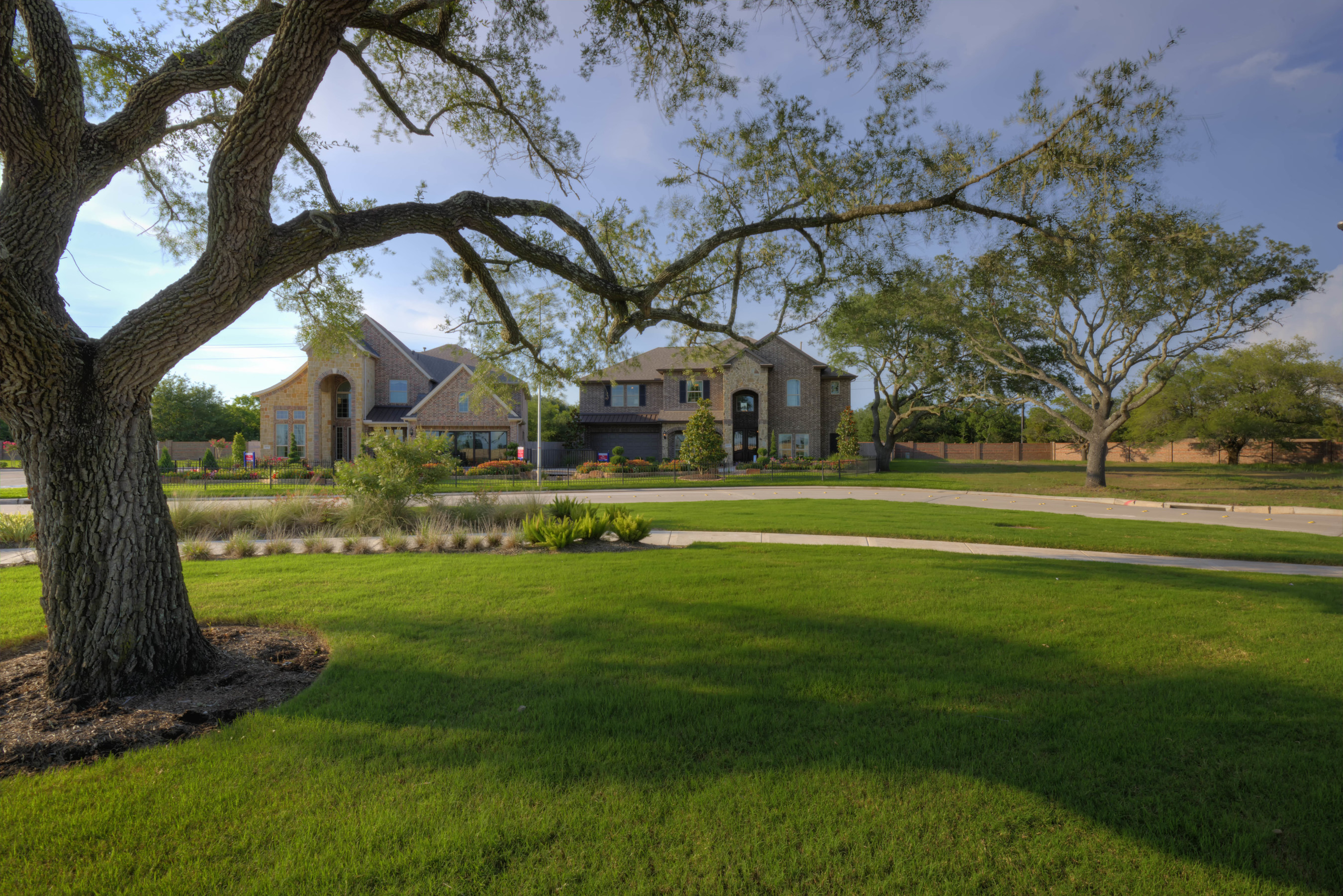 Houston home builder Taylor Morrison and land developer Johnson Development Services have worked to save a stately stand of live oak trees dating back more than 50 years in Fort Bend County.