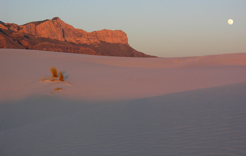 Full moon rising over the gypsum dunes in Guadalupe Mountains National Park in Texas.  (PRNewsFoto/The Nature Conservancy in Texas, NPS/Doug Buehler)
