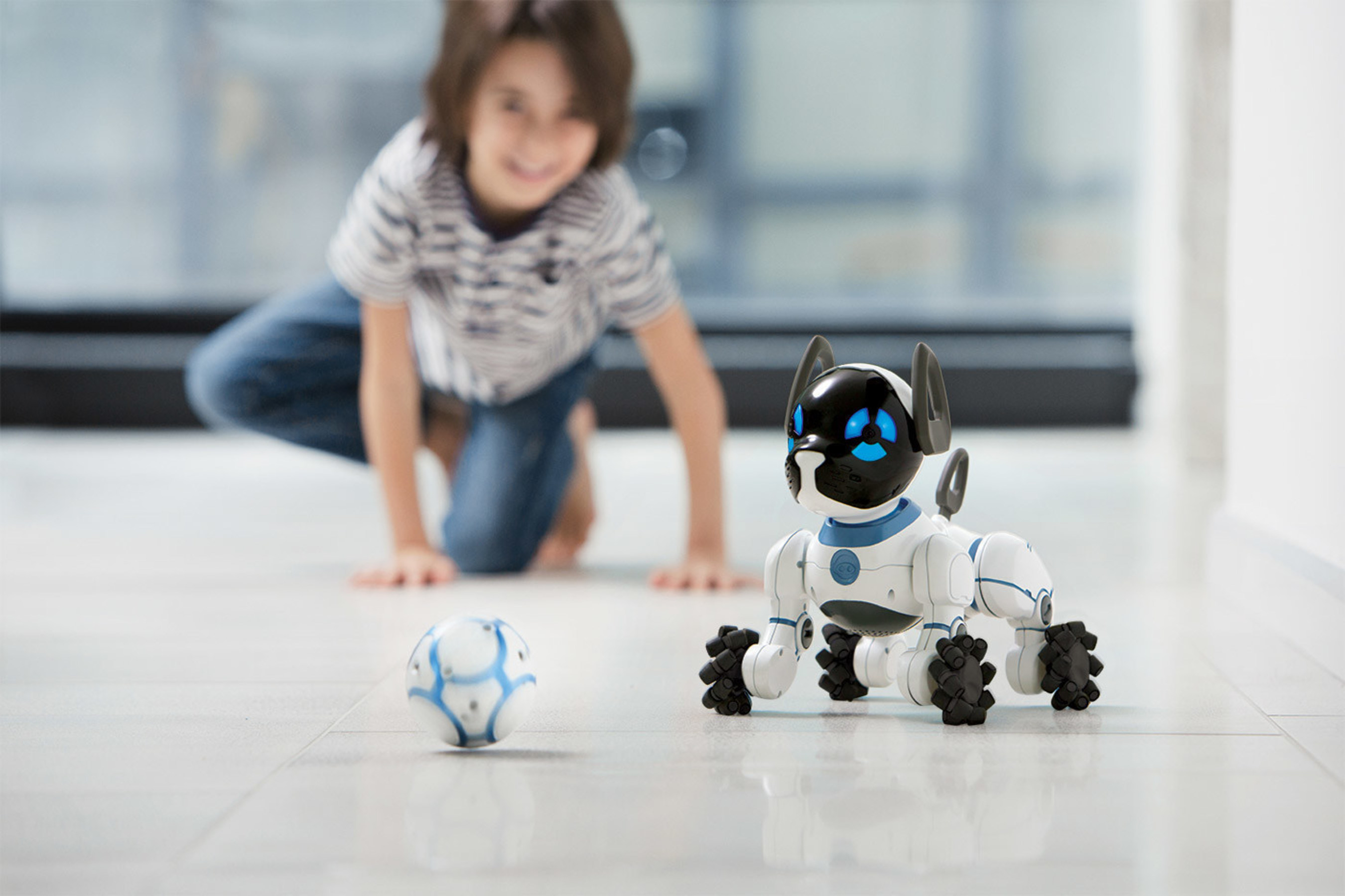 Play Fetch and Soccer with CHiP with the included SmartBall