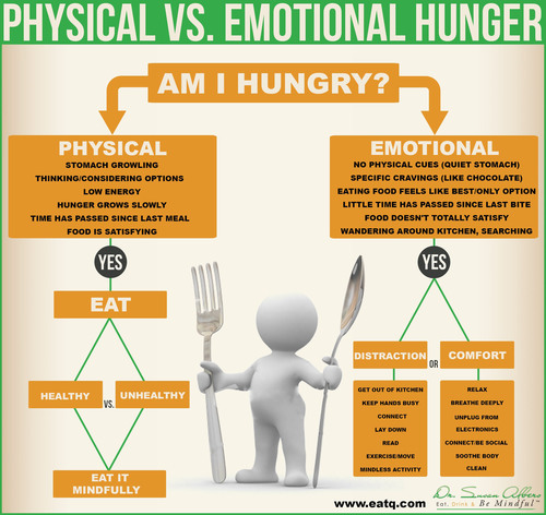 Decoding Your Hunger: Emotional vs. Physical Hunger Flow Chart. (PRNewsFoto/Susan Albers LLC) (PRNewsFoto/SUSAN ALBERS LLC)