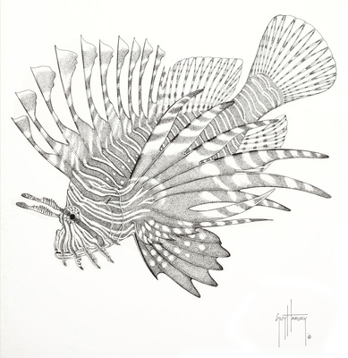 Illustration of a captivating, yet problematic Lionfish by Guy Harvey. The Guy Harvey Ocean Foundation is a sponsor of Expedition Lionfish.