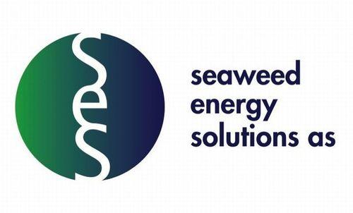 Seaweed Energy Solutions AS Logo