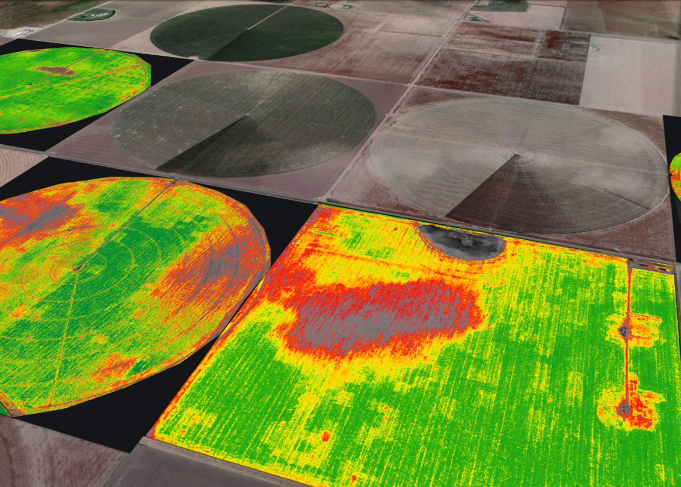 Image: Agribotix™ FarmLens™ Image Processing and Analytics Solution