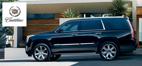 The 2015 Cadillac Escalade is now available at Cavender Cadillac for customers to check out and take for test drives. (PRNewsFoto/Cavender Cadillac)