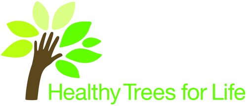 """""""Healthy Trees For Life"""" is a Bayer Advanced initiative designed to keep existing trees healthy and pest free combined with planting new trees across the country. The program's first community service project will kick off today in Miami, Fla., in collaboration with Citizens for a Better South Florida, a non-profit organization focused on community-based environmental education that provides hands-on learning and promotes citizen-led action. Additional community events are planned in Indianapolis, Chicago, Atlanta and Cullman, Ala. For each event, Bayer Advanced will partner with organizations such as Keep Indianapolis Beautiful and Friends of the Parks in Chicago.  (PRNewsFoto/Bayer Advanced)"""