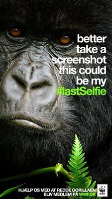 Gorilla #LastSelfie (PRNewsFoto/Grey)