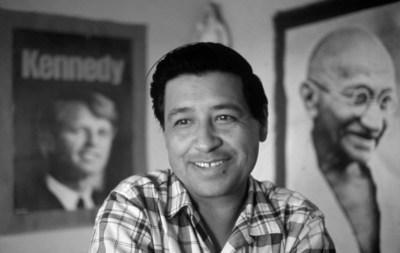Civil Rights Leader, Cesar Chavez, in his office in Delano, CA in 1968.