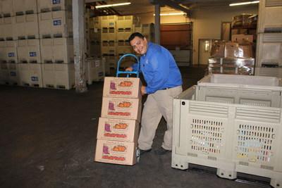 Farm Fresh To You boxes donated to Sacramento Food Bank & Family Services through the Donate-A-Box program.