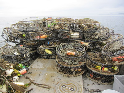 Derelict fishing gear removed from Washington state waters. (photo credit: Natural Resources Consultants)
