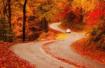 Known for its scenic byways, North Carolina provides the perfect backdrop for brilliant fall color viewing. Photo credit: VisitNC.com - Bill Russ (Request a hi-res version via media@VisitNC.com).  (PRNewsFoto/North Carolina Division of Tourism, Bill Russ)