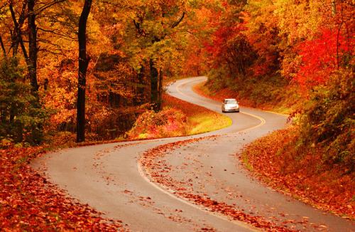 Nine Creative Ways to See North Carolina's Fall Colors