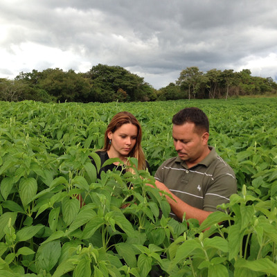 Clartia Butman of Mayorga Coffee with Donald Osorio, an agronomist who is providing technical assistance to the cooperative in Chia. (PRNewsFoto/Mayorga Coffee) (PRNewsFoto/MAYORGA COFFEE)