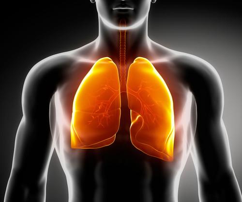 StemGenex to launch adult stem cell lung study.  (PRNewsFoto/StemGenex)