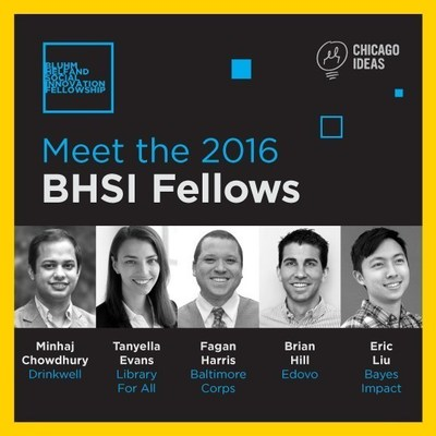2016 BHSI Fellows