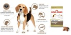 Royal Canin® Adds West Highland White Terrier and Beagle to Breed Health Nutrition™ Product Line