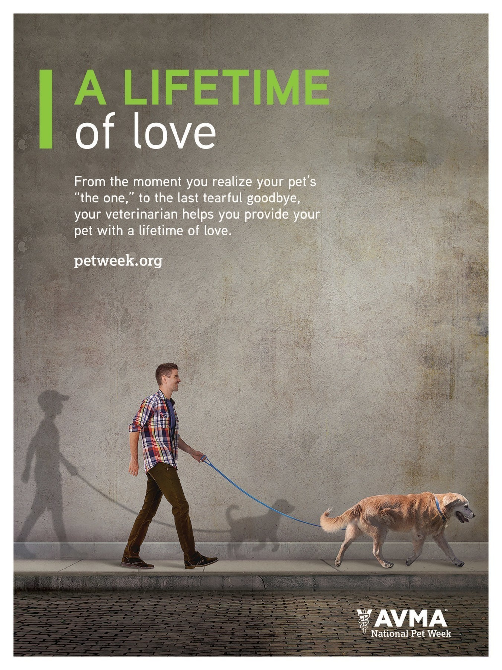 National Pet Week, May 1-7 celebrates veterinarians and clients partnering to provide pets with A Lifetime of Love