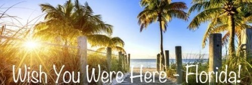 Florida Marriott hotels will offer special summer savings allowing visitors to enjoy overnight accommodations from $79 per night. For information or reservations, visit www.marriott.com/specials/mesOffer.mi?marrOfferId=867099&displayLink=true. ...