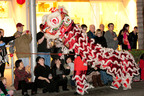 Beverly Hills, California celebrates Chinese New Year 2013 with traditional performances including a lion dance.  (PRNewsFoto/Beverly Hills Conference & Visitors Bureau)