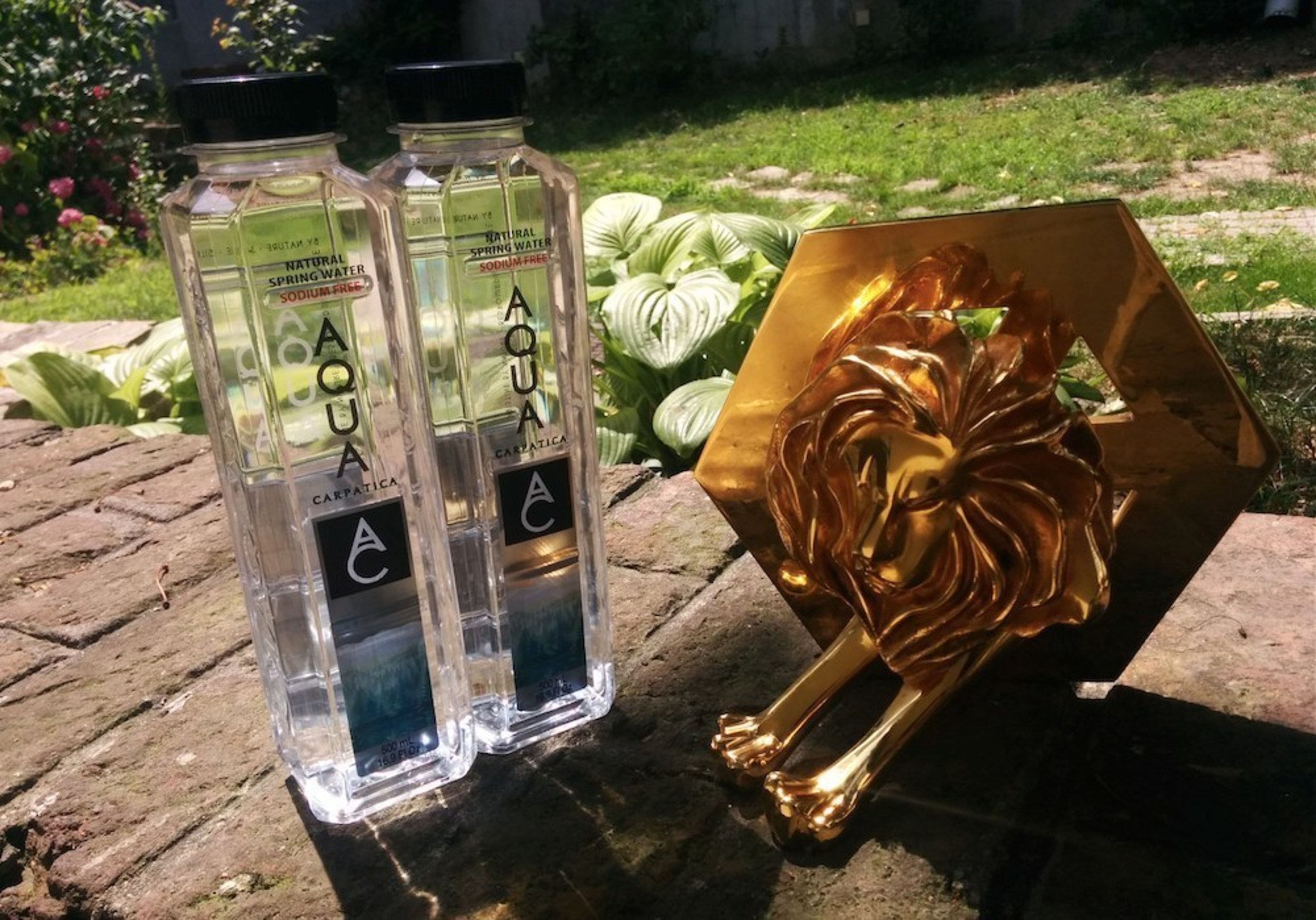 AQUA Carpatica Earns Gold Lion Award at Cannes International Festival of Creativity