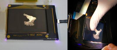 FlexEnable and Merck take major step forward in plastic LCD technology (PRNewsFoto/FlexEnable)