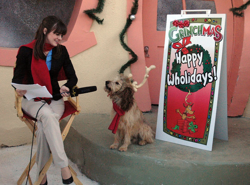 The Grinch's sidekick, Max the dog, helps Universal Studios Hollywood celebrate the 18-days of ...