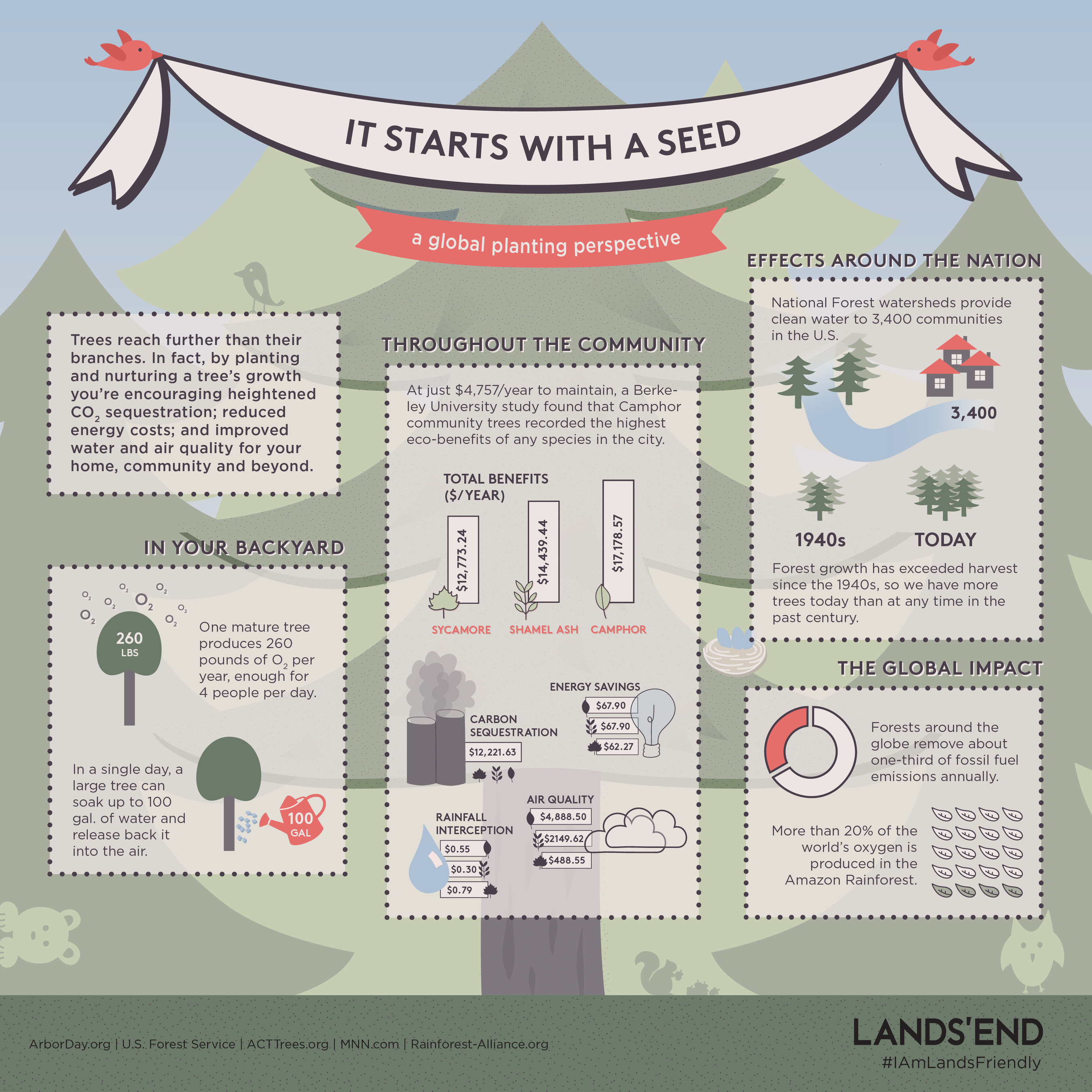 It starts with a seed: a global planting perspective brought to you by Lands' End. #IAmLandsFriendly