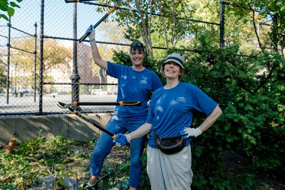 WebMD Cares Impact Day 2016 - NYC employees work to remove invasive plants, making the park more accessible.