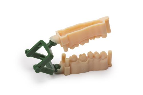 Dental model produced on a Stratasys Objet Eden260V 3D Printer