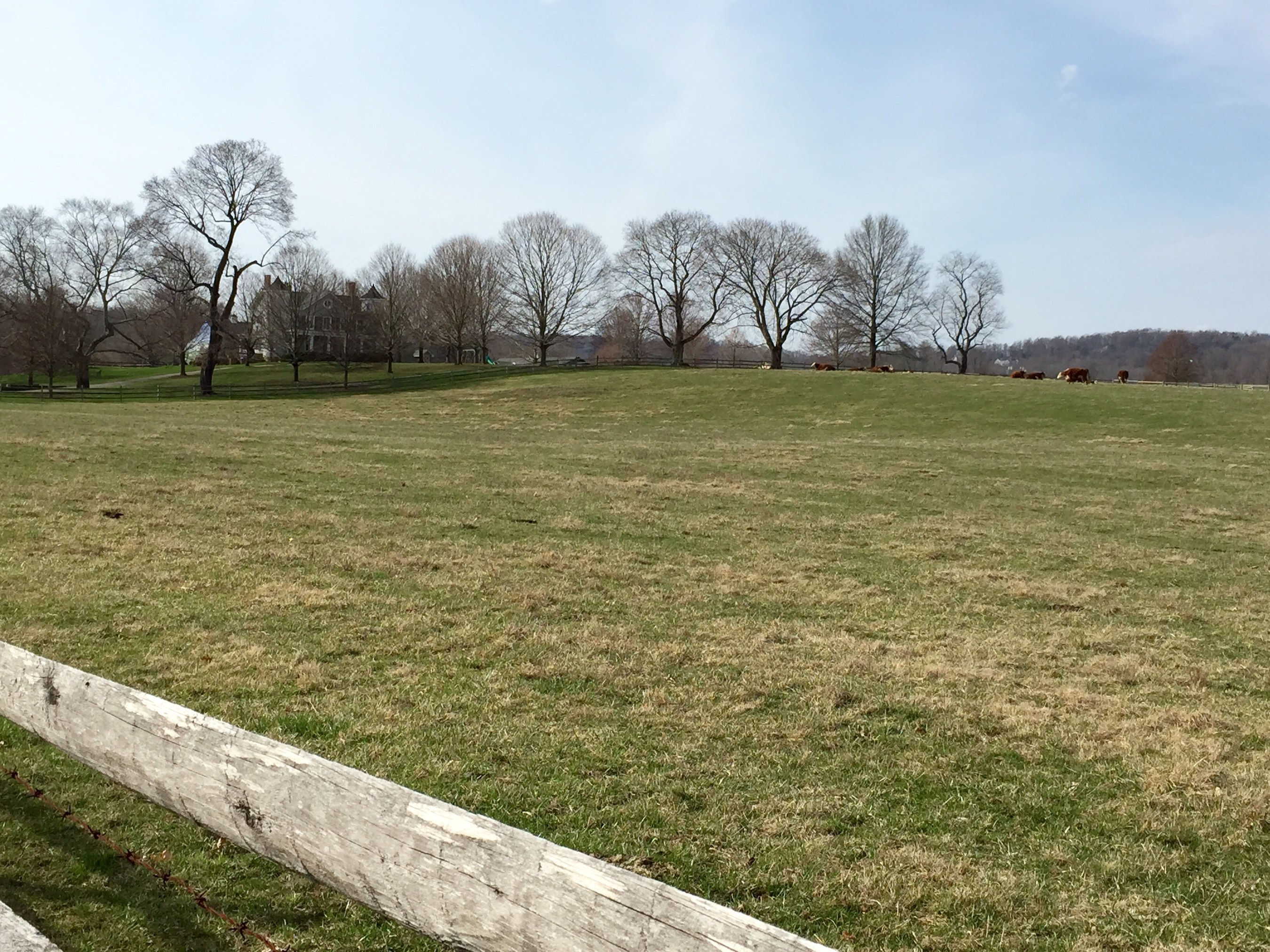 Scene of the contiguous property in Chester Township recently acquired by Gill St. Bernard's School.