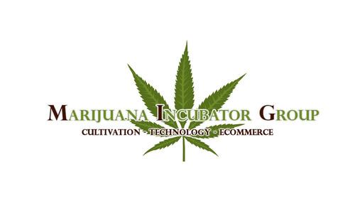 Marijuana Incubator Group, Inc. (PRNewsFoto/AV1 Group, Inc.) (PRNewsFoto/AV1 GROUP, INC.)