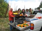 Bon Appetit team members help with the harvest at a local farm.  (PRNewsFoto/Bon Appetit Management Company)
