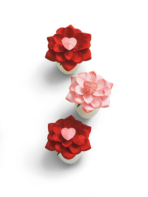 Hallmark introduces the first-of-its-kind Blooming Expressions - a fabric flower that blooms to reveal a message for a special person.  (PRNewsFoto/Hallmark Cards, Inc.)