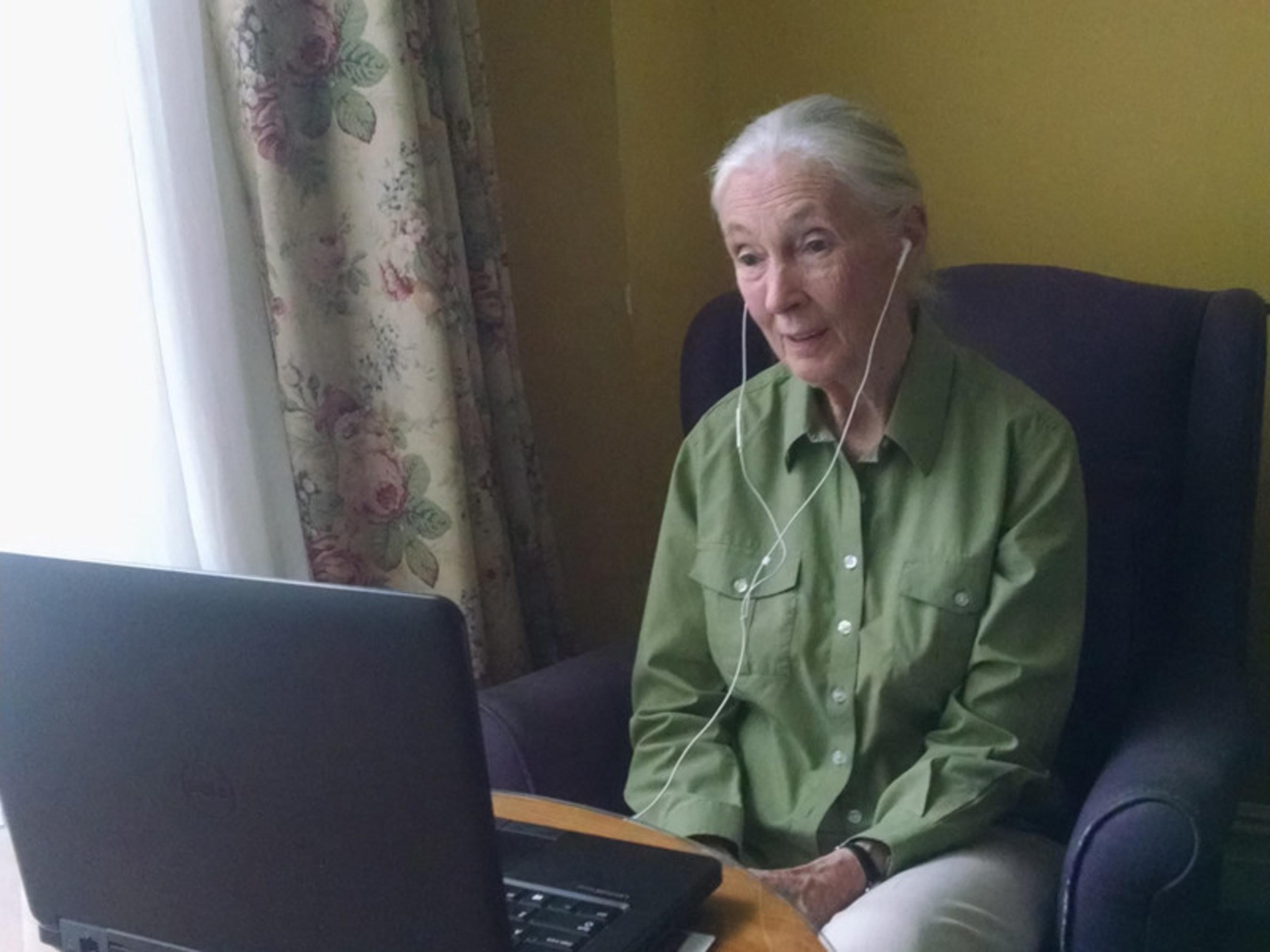 Jane Goodall Inspires Laurel Springs